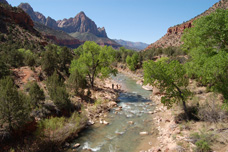 Las Vegas to Zion tour